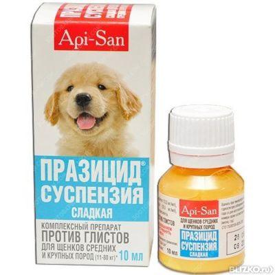 травматин для собак купить запахов термобелье Термобелье